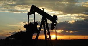 Control de la Gestión en la Industria de los Hidrocarburos
