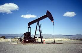 Gerencia de Proyectos  en el Sector de los Hidrocarburos