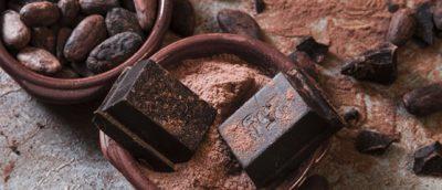 Aspectos Básicos del Cacao y Chocolate
